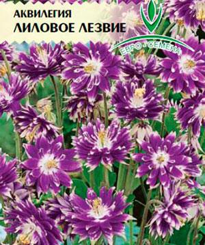 Где можно купить семена цветов