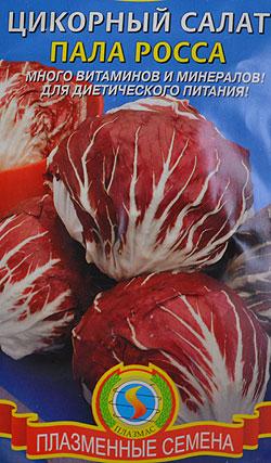 Выращивание салат пала росса 35