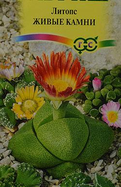 Комнатных растений фото